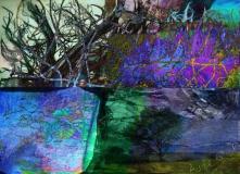 Aude Creek 2, Digital Print on Paper or Canvas