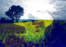 Spirit Over Fields, Digital print on paper or canvas, 2 of 5